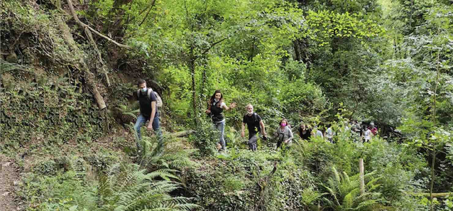 Autunno in Valdinievole: visite guidate – Padule di Fucecchio