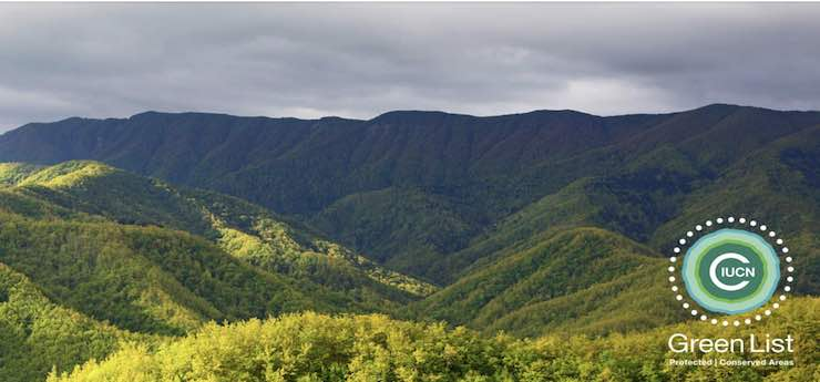 Visite ed escursioni di giugno nel Parco delle Foreste Casentinesi