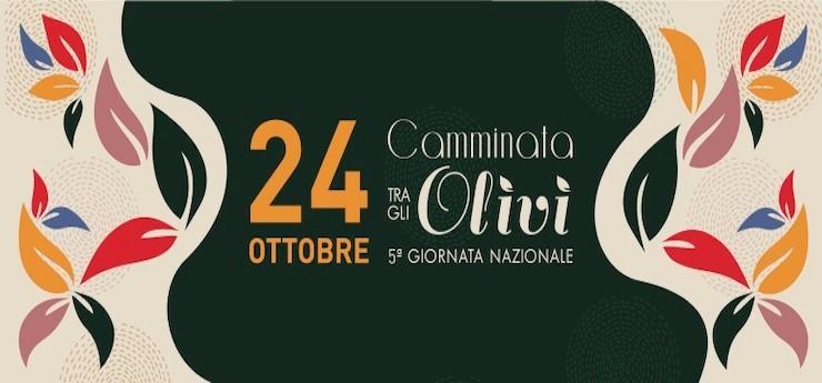 Camminata tra gli olivi. Giornata nazionale – Luoghi vari in Toscana